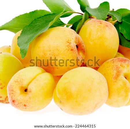 apricots in a bunch with leaves on white - stock photo
