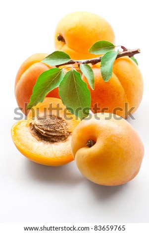 apricots on white