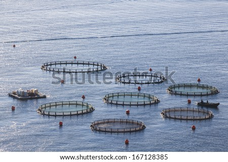 Aquaculture farms in northern Greece