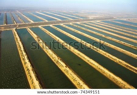Aquaculture, seafood - stock photo