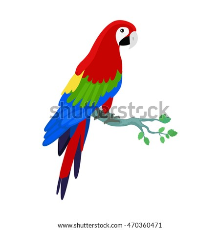 Ara parrot . Birds of Amazonian forests in flat design illustration. Fauna of South America. Beautiful Ara parrot on branch posters, childrens books illustrating. Isolated on white.