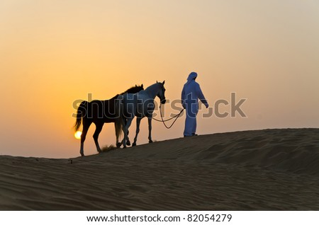 Arab Man with Arabian Horse in the Arabian Desert during the sunset - stock photo