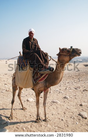 Arabian Bedouin riding a camel near Great Pyramids in Giza, Cairo, Egypt - editorial - stock photo