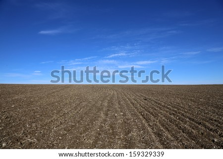 arable and a blue sky