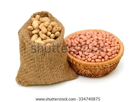 Arachis hypogaea (peanuts) isolated on white background - stock photo
