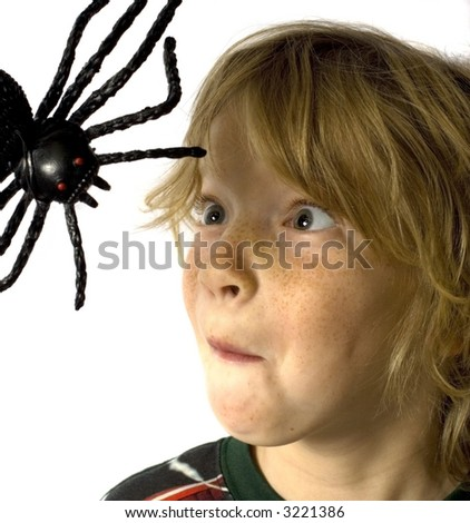 Arachnophobia - stock photo