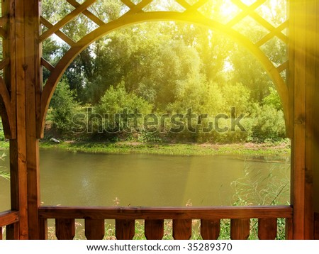 Arbor on the bank of the river