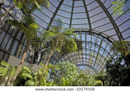 Arboretum and Botanical Garden in Balboa Park San Diego - stock photo