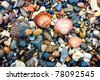 Arc of shells, beach color pebble - stock photo