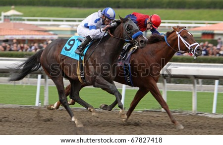 ARCADIA, CA - DEC 26: Twirling Candy (#9), under jockey Joel Rosario, outruns Smiling Tiger, Russell Baze up, to win the Grade I Malibu Stakes at Santa Anita Park on Dec 26, 2010 in Arcadia, CA.