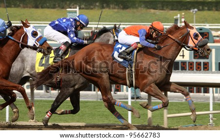 ARCADIA, CA - FEB 19: Apprentice jockey Eswan Flores (orange cap) and Quintons Destiny win the 3rd race at Santa Anita Park in Arcadia, CA, on Feb 19, 2012. - stock photo