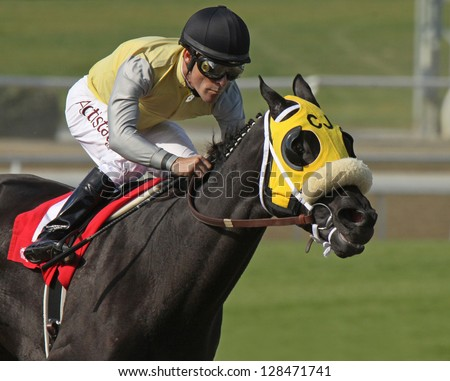 "ARCADIA, CA - FEB 16: Hall of Fame Jockey Gary Stevens pilots ""Great Hot"" to victory in The Santa Maria Stakes at Santa Anita Park on Feb 16, 2013 in Arcadia, CA. - stock photo"