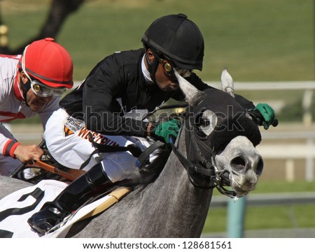 "ARCADIA, CA - FEB 16: Jockey Kevin Krigger pilots ""Sweetrayofsunshine"" to her 3rd straight win at Santa Anita Park on Feb 16, 2013 in Arcadia, CA. - stock photo"