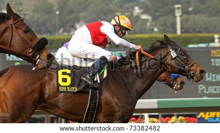 ARCADIA, CA - FEB 5: Miss Match, under jockey Garrett Gomez, is the long shot winner of The Santa Margarita Stakes at Santa Anita Park on Mar 12, 2011 in Arcadia, CA.