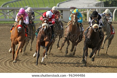 ARCADIA, CA - Feb 25: Thoroughbreds heads down the homestretch in the 5th race at Santa Anita Race Track on Feb 25, 2012 in Arcadia, CA. Eventual winner is Gnarly Dude and Martin Pedroza (black cap). - stock photo