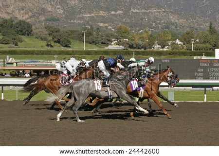 ARCADIA, CA - JAN 31, 2009: A field of thoroughbreds storms down the home stretch at historic Santa Anita Park in Arcadia, CA, on January 31, 2009. Santa Anita began its 74th season in December 2008. - stock photo
