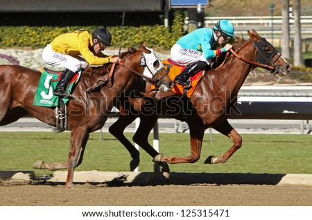 "ARCADIA, CA - JAN 17: Jockey Joseph Talamo and ""Derekson"" outrun Gary Stevens and ""Trice Up"" to win a maiden race at Santa Anita Park on Jan 17, 2013 in Arcadia, CA. - stock photo"