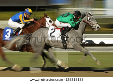 "ARCADIA, CA - JAN 17: Jockey Kevin Krigger (black cap) pilots ""Sweetrayofsunshine"" to victory in a claiming race at Santa Anita Park on Jan 17, 2013 in Arcadia, CA. - stock photo"