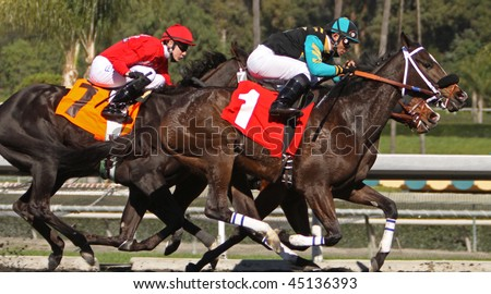 ARCADIA, CA - JAN 23: Joel Rosario guides Victory Dancer (#1) to victory in the first race at Santa Anita Park on Jan 23, 2010 in Arcadia, CA.