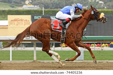 ARCADIA, CA - MAR 12:  Top jockey Joel Rosario competes in a maiden race aboard Titian at Santa Anita Park on Mar 12, 2011 in Arcadia, CA. - stock photo