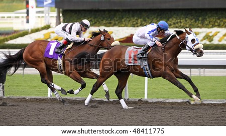 "ARCADIA, CA - MARCH 10: ""Born to Shop"" (#11) breaks his maiden under jockey Silvio Amador at Santa Anita Park on Mar 10, 2010 in Arcadia, CA. - stock photo"