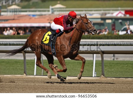 "ARCADIA, CA - MARCH 3: Jockey Martin Garcia and ""Baraja de Oro"" win the first race at Santa Anita Race Track on March 3, 2012 in Arcadia, CA. - stock photo"