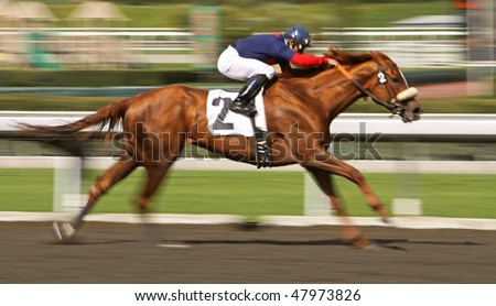 "ARCADIA, CA - MARCH 4: ""Value Stream"", under jockey Joel Rosario, wins an allowance race at Santa Anita Park on March 4, 2010, in Arcadia, CA."