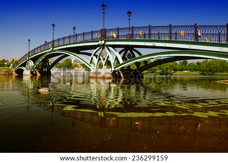 arch bridge in Tsaritsyno, Moscow, Russia - stock photo