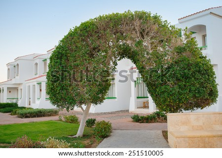 arch of green tree. - stock photo