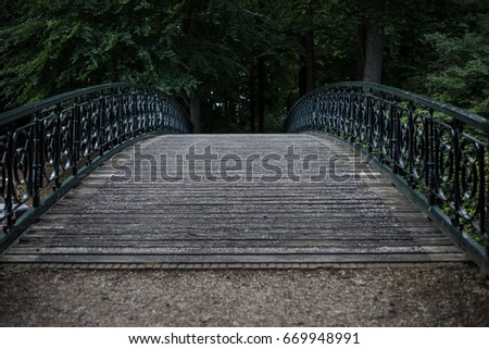 Arched foot bridge in a green dark park. Selective focus.