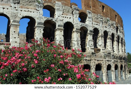 Arches of the imposing Colosseum among flowering plants of Oleander in Rome 3 - stock photo