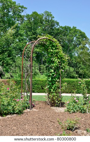 Archway covered in foliage in formal garden - stock photo