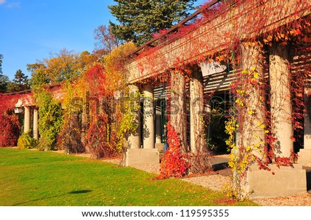 Archway in park in autumn, Pergola in Wroclaw, Poland - stock photo