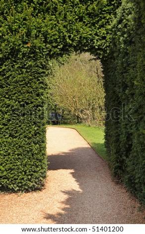 Archway through a Hedgerow in an English garden - stock photo