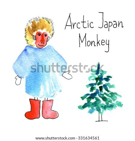 Arctic japan monkey cute postcard. Watercolor drawing sketch.  - stock photo