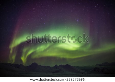Arctic landscape with Northern Lights - Spitsbergen, Svalbard
