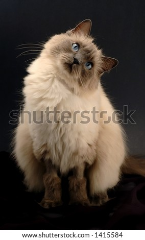 Are you OK??? - stock photo