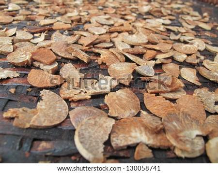 Areca nut. - stock photo