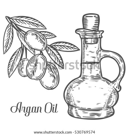Argan Nut Oil Bottle Berry Leaf Stock Illustration 530769574 - Shutterstock