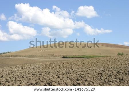 Arid and plowed fields under Tuscany summer sky - stock photo