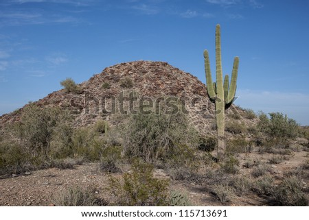 Arid, isolated desert desert scenery of Arizona - stock photo