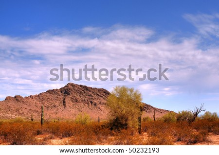 Arizona desert mountain in the spring - stock photo