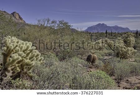 Arizona desert on an overcast day - stock photo