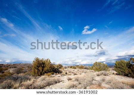 Arizona high desert - stock photo