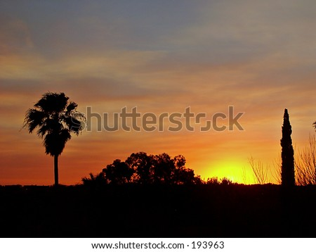Arizona sunset - stock photo