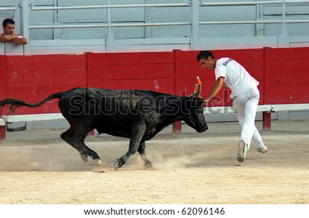 ARLES, FRANCE - JULY 9: Trainee of the school for Raseteur in Arles Kevin Daumas fights against a Camargue-bull in the arena on July 09, 2010 in Arles, Bouche du Rhone, France - stock photo