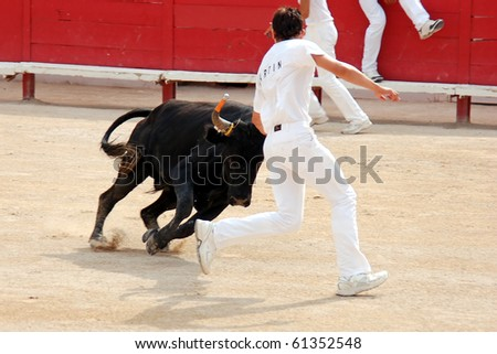ARLES - JULY 9: Trainees of the school for Raseteur in Arles Anthony  Martin fights against a Camargue-bull in the arena on July 09, 2010 in Arles, Bouche du Rhone, Fance - stock photo