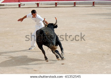 ARLES - JULY 9: Trainees of the school for Raseteur in Arles fights against a Camargue-bull in the arena on July 09, 2010 in Arles, Bouche du Rhone, Fance - stock photo
