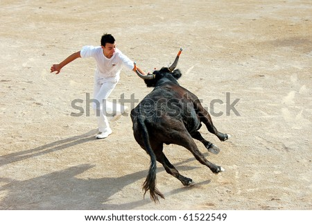 ARLES - JULY 9: Trainees of the school for Raseteur in Arles fights against a Camargue-bull in the arena on July 09, 2010 in Arles, Bouche du Rhone, France - stock photo