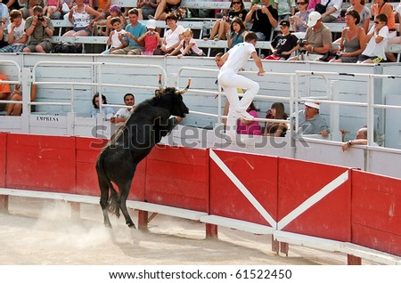 ARLES - JULY 9: Trainees of the school for Raseteur in Arles flees from the furious Camargue bull Camargue-bull in the arena on July 09, 2010 in Arles, Bouche du Rhone, France - stock photo
